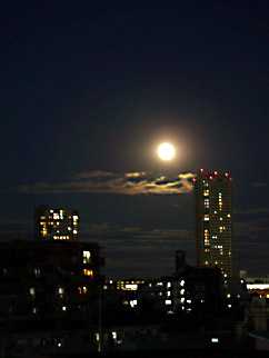 saitama in the moonlight