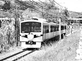 P5046440